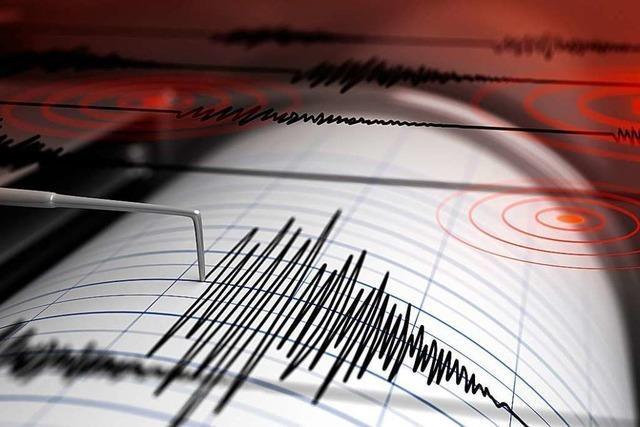 Erdbeben der Stärke 3,7 am Bodensee – spürbar, aber harmlos
