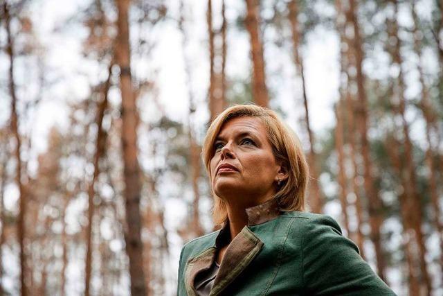 Julia Klöckner will über eine Milliarde Euro für Rettung des Waldes