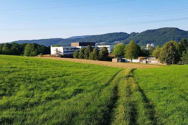 Rehaklinikum Bad Säckingen braucht neuen Chef