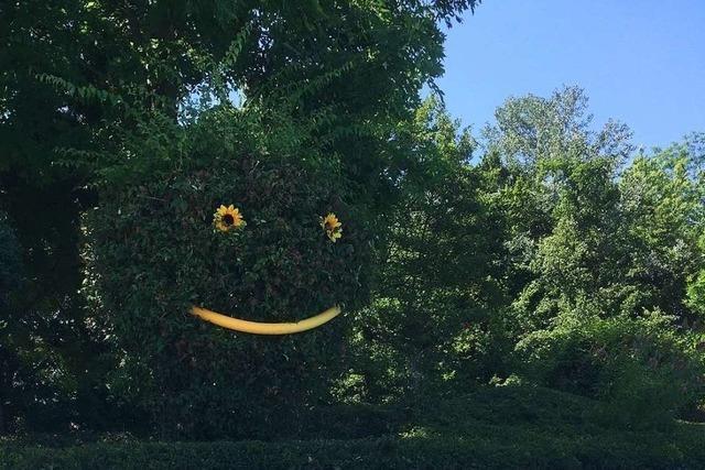 Pflanzen-Smiley im Grenzacher Schwimmbad