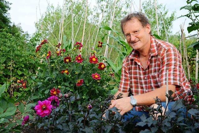 So kann man Schädlinge im Garten ohne Pestizide bekämpfen