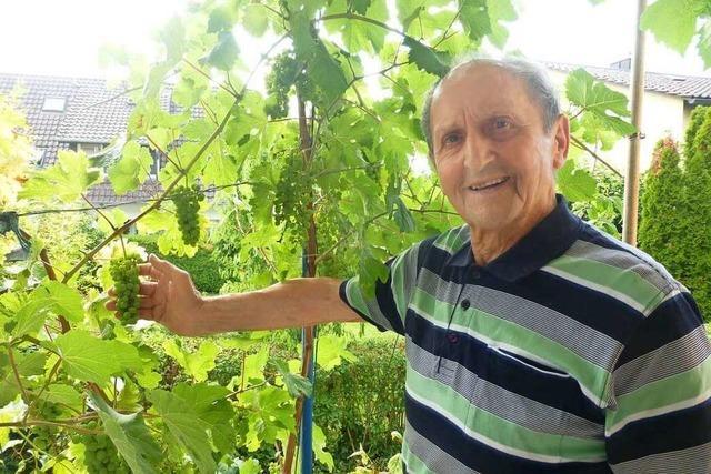 Bollschweils Ehrenbürger Willi Bechtold blickt zurück auf 90 Lebensjahre