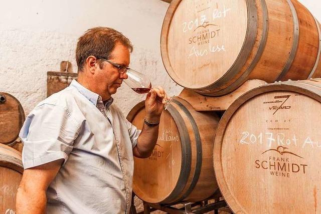 Von der Traube bis zum Wein