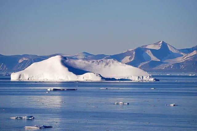 Serengeti der Arktis wird unter Schutz gestellt