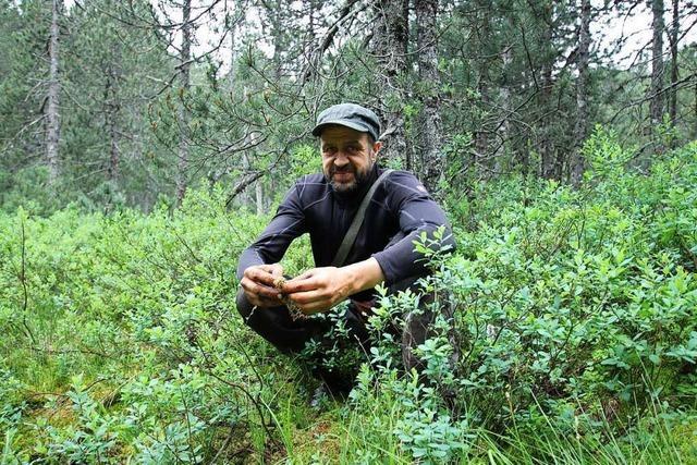 Wie sich ein Biologe um den Erhalt der Moore im Hochschwarzwald kümmert