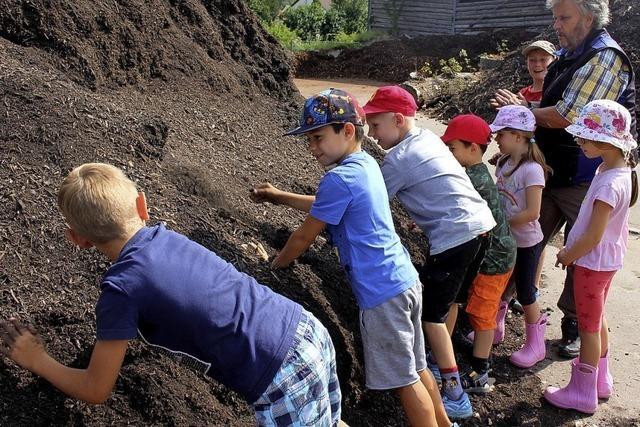 Grünabfall wird zu Kompost