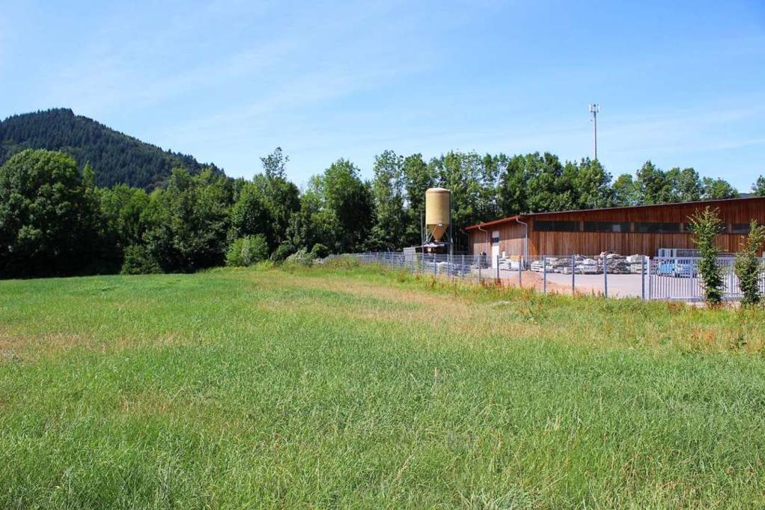Hier auf der Fläche neben dem Kommunal...auen mit Anbau für den Rettungsdienst.  | Foto: Karin Heiß