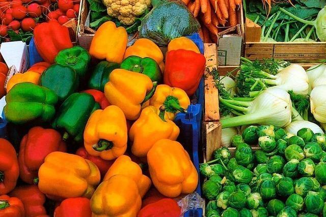 Gundelfingen stoppt Foodsharing-Projekt nach drei Wochen