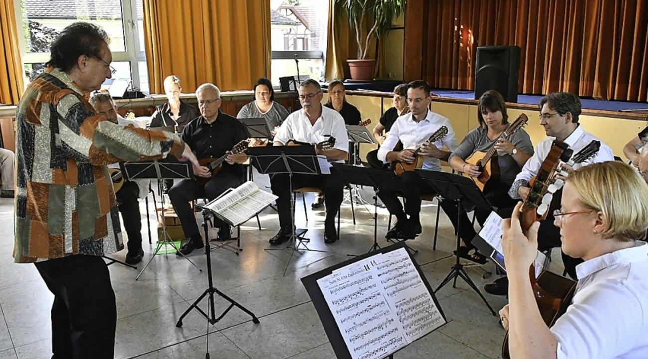 Das Zupforchester unter der Leitung von Wolfgang Bast  | Foto: Wolfgang Künstle