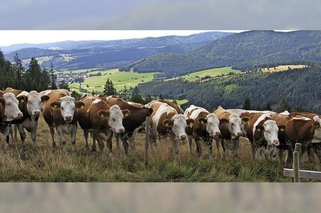 Regional, bio und umweltverträglich