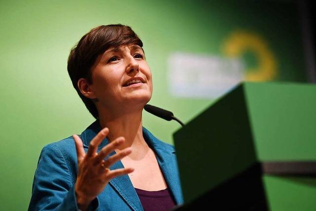 Grüne fordern, dass Baden-Württemberg als erstes Bundesland klimaneutral wird