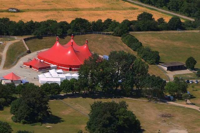 Nach bitterer Bilanz: ZMF-Organisatoren wollen mehr Platz – für ein größeres Zelt
