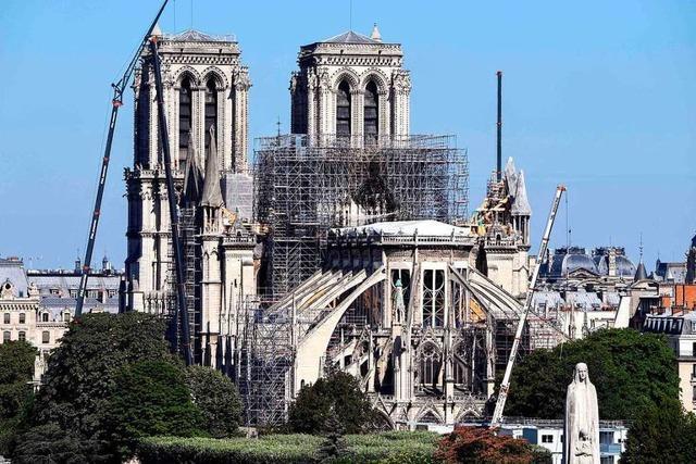 Das giftige Erbe von Notre-Dame