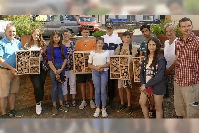 Vier Insektenhotels vom Schulverbund