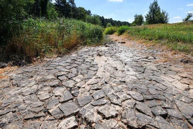 Deutschlands Stärke für den Klimaschutz nutzen
