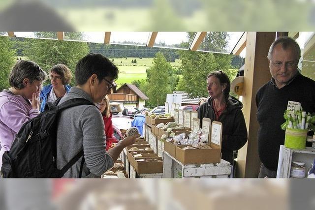 Markt- Infostände, Bernauer Zimmermänner, Alphornbläser, Hoh'wald Musig in Bernau