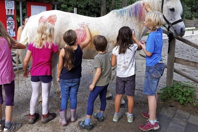 Bodypainting fürs Pferd