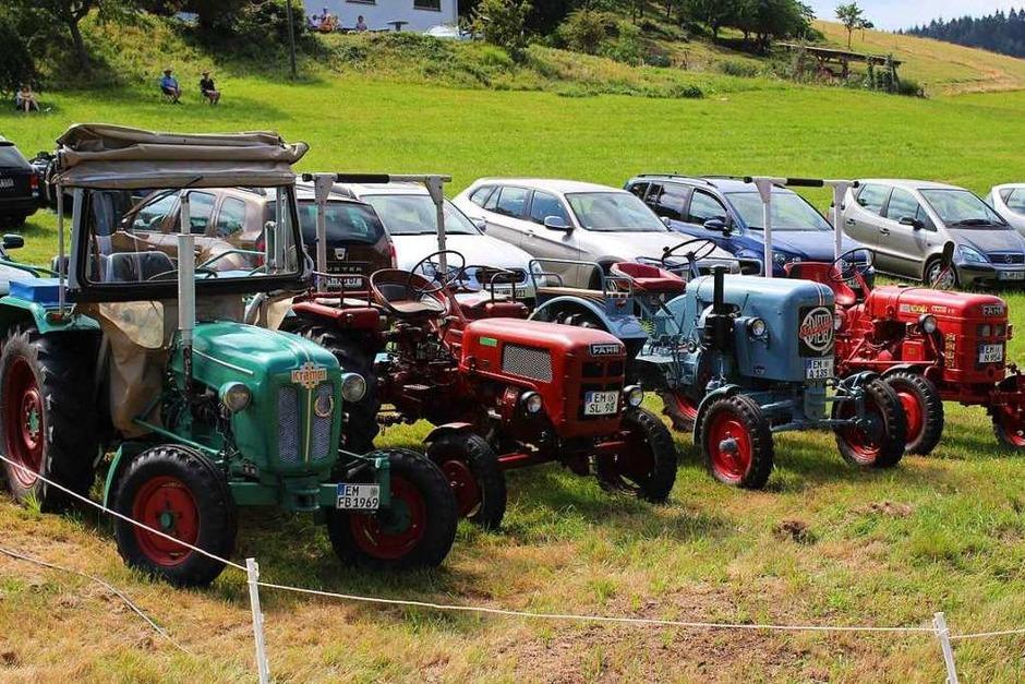 Auch vier historische Traktoren konnten beim Rossfest am Sonntag in Kohlenbach bewundert werden (Foto: Karin Heiß)