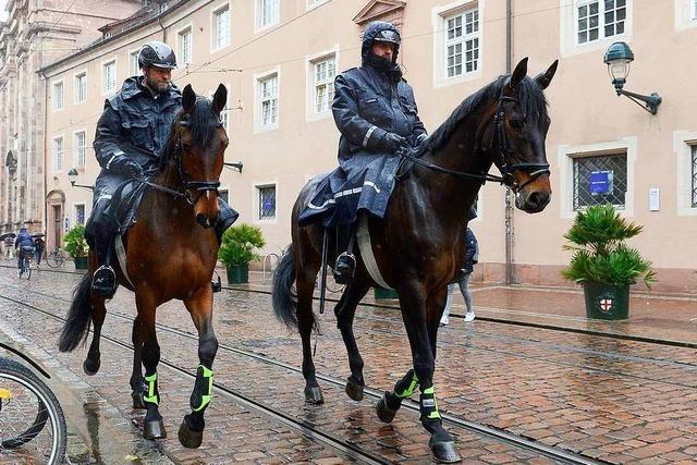 Zwei Reiterstaffeln sind dem Rechnungshof zu teuer