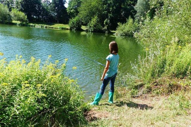 Der Steinbuckweiher bei Buchheim ist ein Kleinod für Angler
