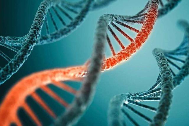 Vor 150 Jahren ebnete ein Basler Forscher den Weg für die Entdeckung der DNA