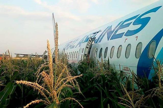 Russisches Passagierflugzeug kollidiert mit Vögeln und landet im Maisfeld