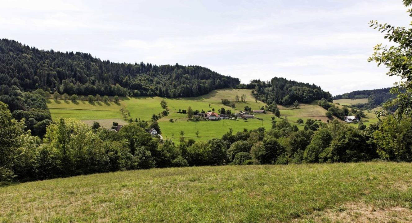 """Blick vom oberen Rand des Bebauungsgeb...8222;Über dem Wäldele"""" verbaut.     Foto: Gabriele Zahn"""