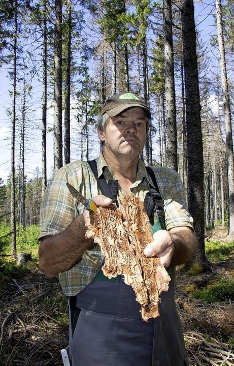 Oswald Tröndle zeigt, was von außen ka...er Bäume - viele bereits abgestorben.   | Foto: