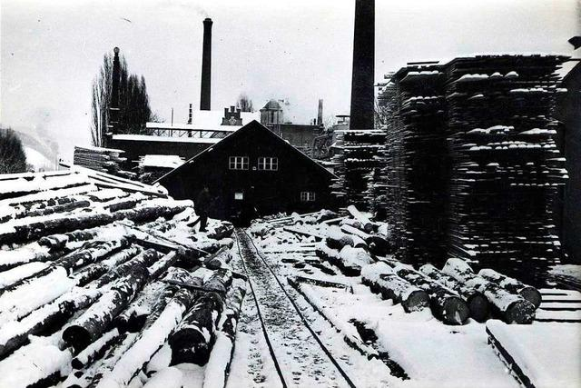 Im heutigen Freiburger Ganter-Biergarten wurde einst mit Holz gehandelt