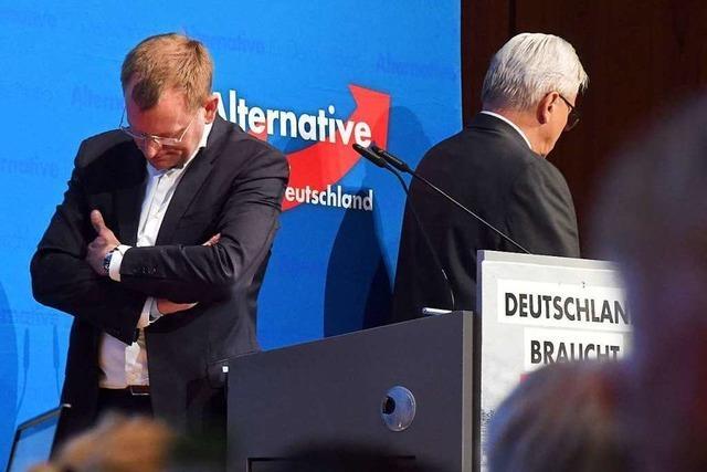 In der baden-württembergischen AfD eskaliert der Streit
