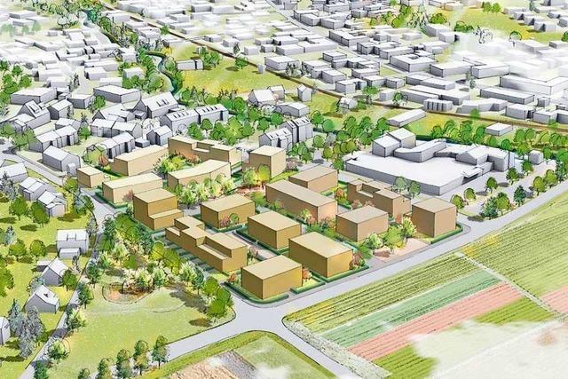 Binzen knüpft Vergabe von Grundstücken an innovative Konzepte