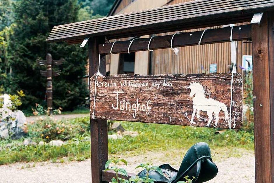 Idyllisch und viele Freiheiten für die Tiere: der Junghof Kappel (Foto: Stefan Hipp)