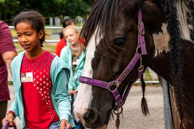 Gundelfinger Kinder lernen den richtigen Umgang mit Pferden