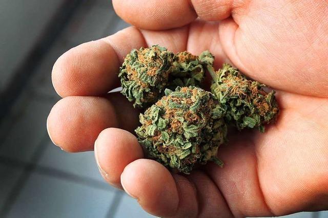 Zwei Marihuana-Dealer müssen für mehr als sieben Jahre ins Gefängnis