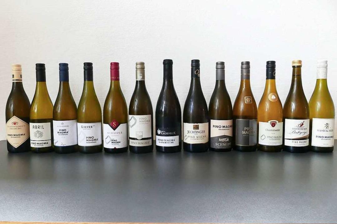 Am 1. September kommen die Pino Magma ...tühler Weinbaubetrieben in den Handel.    Foto: Gerold Zink
