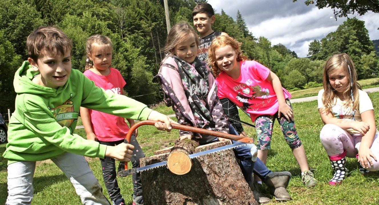 Viel Spaß machte bei der Langenauer Dorf-Olympiade auch das Baumscheiben-Sägen.   | Foto: Ralph Lacher