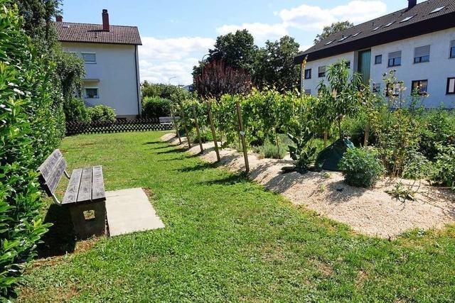 Rheinfelden setzt auf ökologischen Ausgleich