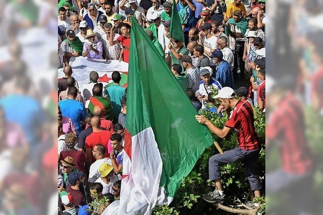 Das totale Patt in Algerien