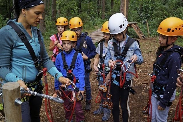Kinder nehmen den Kletterwald in Beschlag