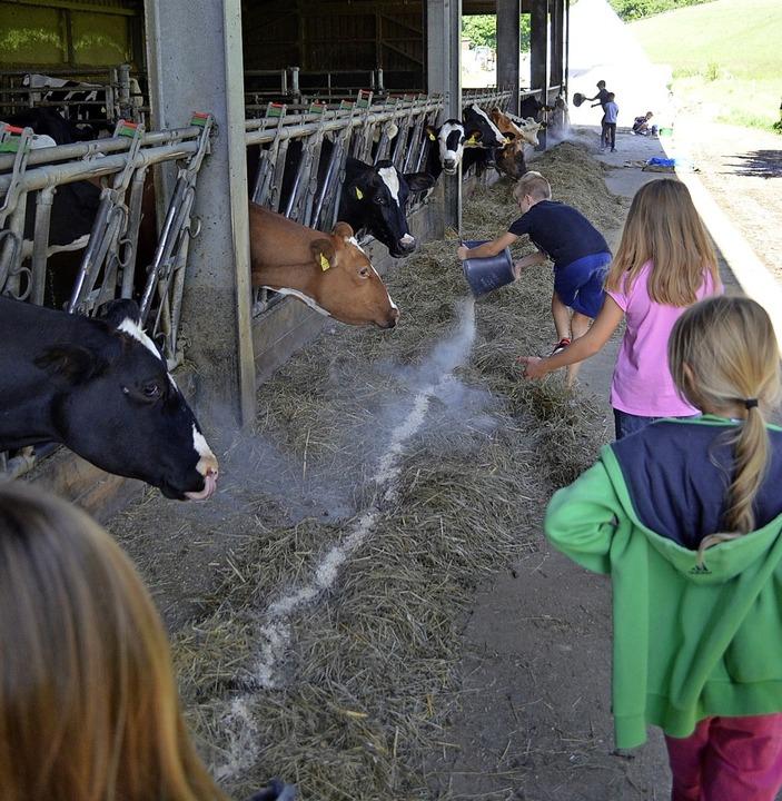 Die Kinder durften zuerst die Kühe füttern <ppp> </ppp>  | Foto: Jasmin Radel