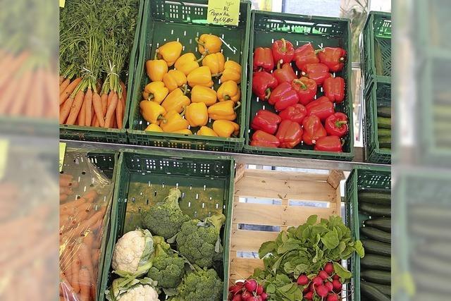Gesunde Farbenpracht auf den Wochenmärkten
