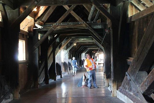 Die Holzbrücke als Lebensraum