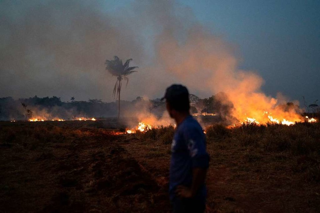 Waldbrände am Amazonas  | Foto: Leo Correa (dpa)