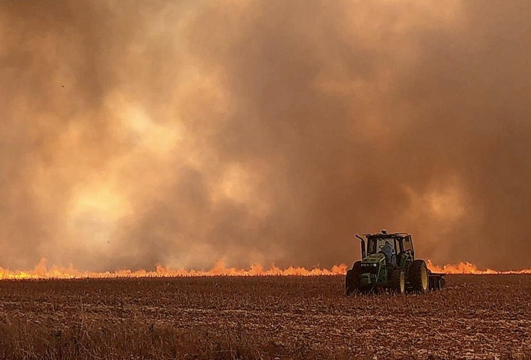 In Brasilien wüten die schwersten Waldbrände seit Jahren.     Foto: ---