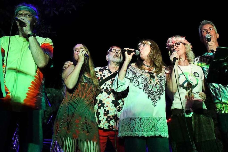 Impressionen vom Woodstock-Revival in Lörrach (Foto: Barbara Ruda)