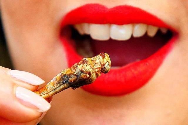 Insekten als Nahrungsmittel – nachhaltig produziert und überraschend gesund