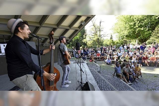 Straßenmusiker im Park