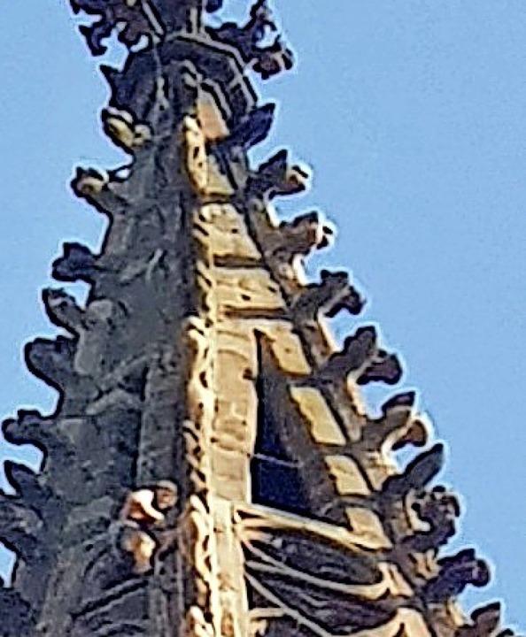 Der illegale Kletterer kam fast bis zur Turmspitze.   | Foto: Gerd Kappler