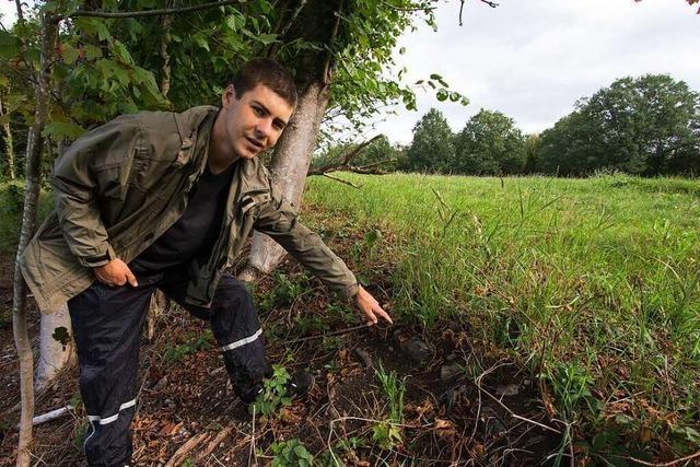 Heimatforscher: Beim Bau des Leopoldskanals gab es sicher Unfälle