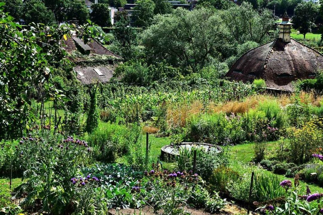 Der Garten am ehemaligen Kartäuserklos...en der Stadt  besteht seit 600 Jahren.  | Foto: Thomas Kunz